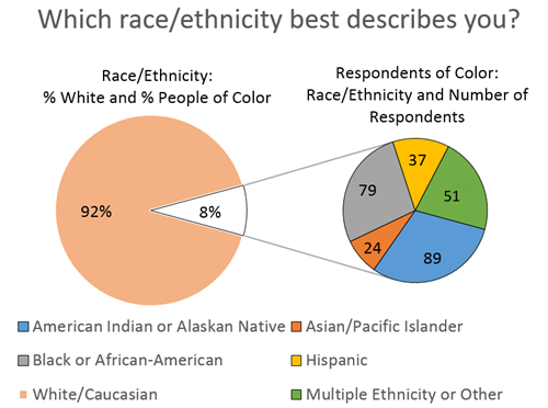 Race/Ethnicity Graph